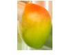 Mango Classico